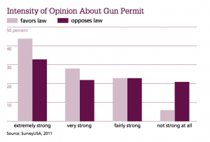 Intensity of Opinion About Gun Permit