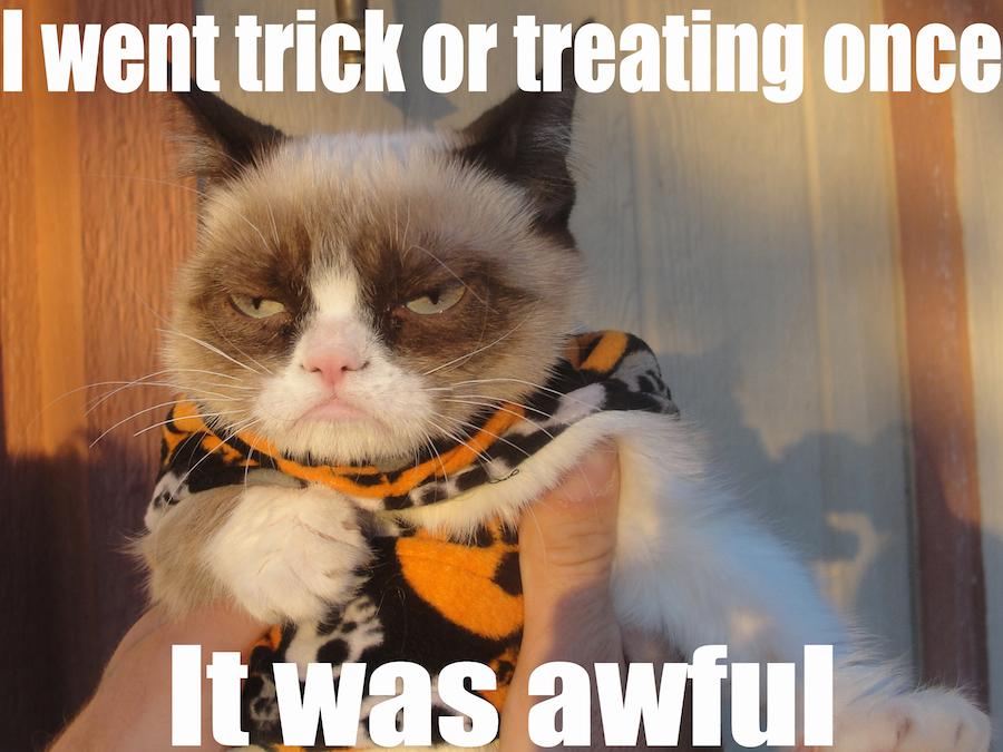 Cat Memes: Contexts