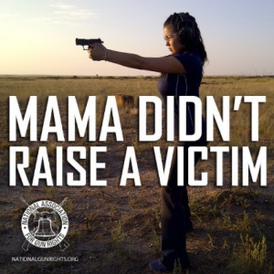Image via National Organization for Gun Rights.