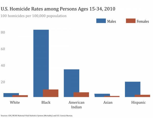 2010 Youth Homicide Rates by Race