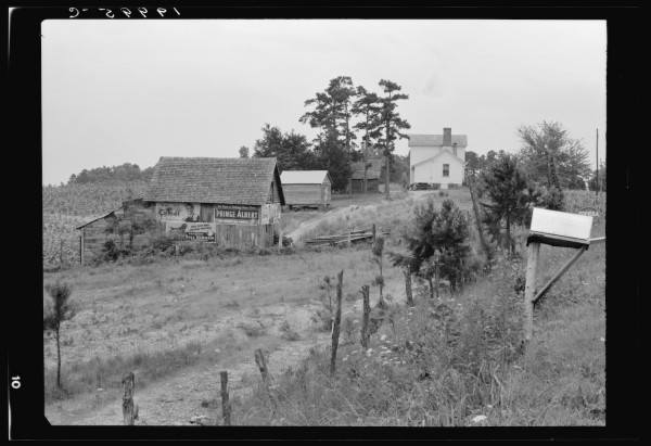 General view of a hillside farm which faces the road showing owner's house, outbuildings, and tobacco field howing erosion. The Negro sharecropper farm is on the other side of this same hill. Person County, North Carolina.