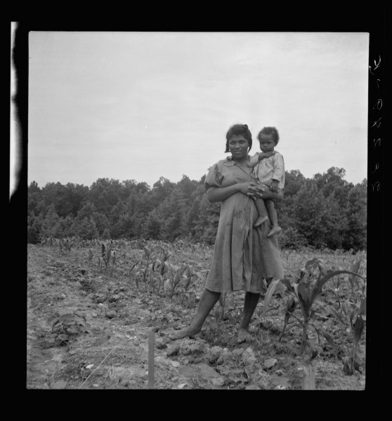 Wife and child of young sharecropper in cornfield beside house. Hillside Farm. Person County, North Carolina.